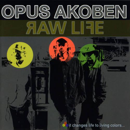 Jaquette de l'album «Raw Life»